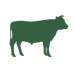 grass-fed-beef icon