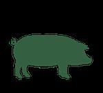 grass-fed-pork icon
